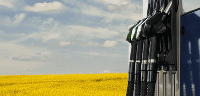 Biopaliwa – w oparach kosztownego absurdu