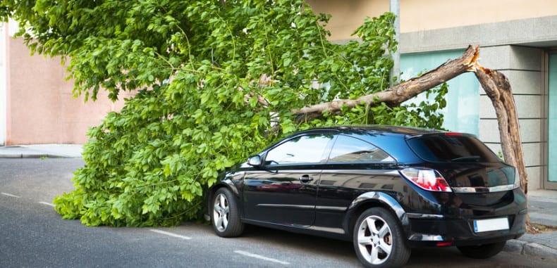 Gniew matki natury a odszkodowanie za zniszczone auto